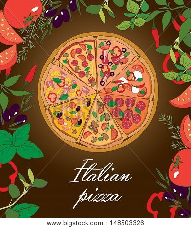 Traditional Italian pizza with spices and herbs vector illustration