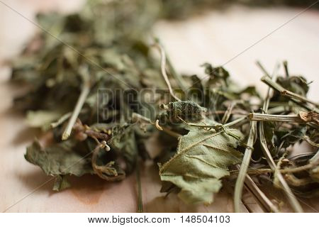 Jiaogulan chinese tea dry leaves, medical herb