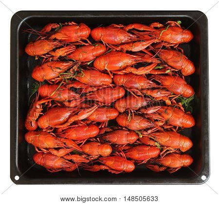 Cooked red crayfish at the black pan