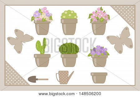 Set of various houseplants isolated bromeliad, cactus, collection,