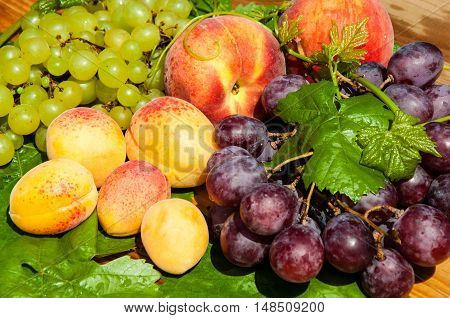 Ripe Grapes And Fruits