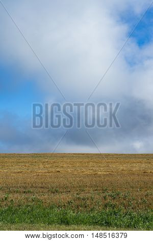 Photo field in a minimalist style after harvest