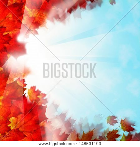Autumn Background Border. Red Leaves and Sky