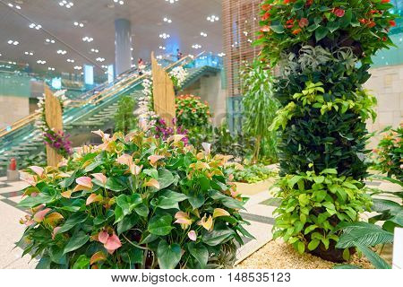 SINGAPORE - CIRCA AUGUST, 2016: garden inside of Changi Aiport. Changi Airport is the primary civilian airport for Singapore.
