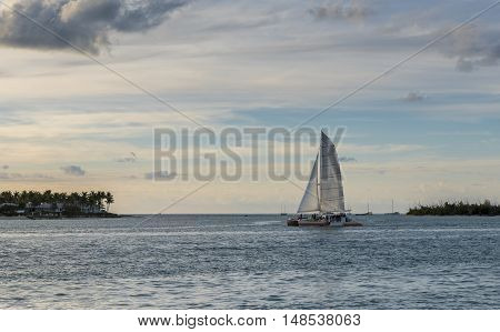 A catamaran in the middle of the ocean on a summers day