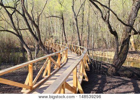 Winding pedestrian wooden bridge in the park in spring