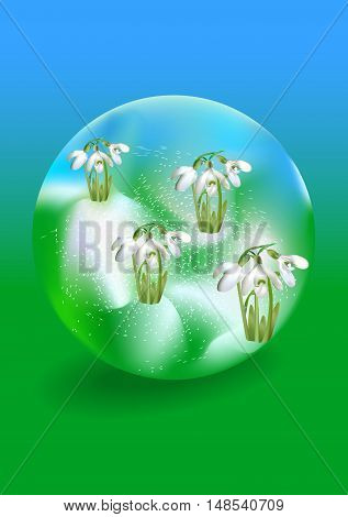 Glass ball with falling snow and snowdrops. Spring green and blue background with snowdrifts and blooming snowdrops