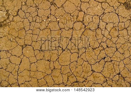 Texture of the soil, soil texture, nature background, cracked ground texture, ground