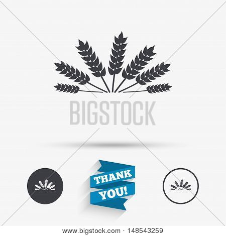 Agricultural sign icon. Wheat corn. Gluten free or No gluten symbol. Flat icons. Buttons with icons. Thank you ribbon. Vector