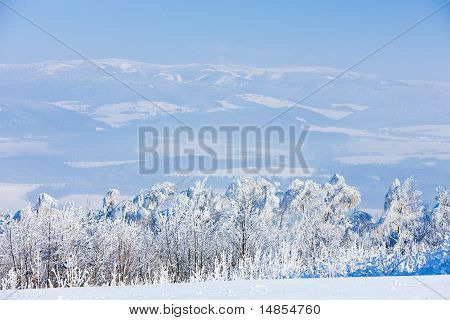 Jeseniky Mountains In Winter