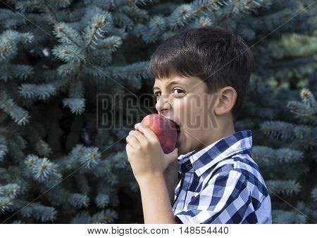 boy eats a ripe juicy red peach