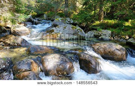 Flowing Water In The Stream