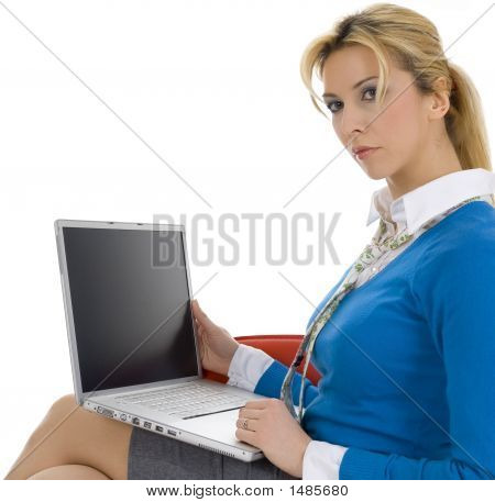 Young Beautiful Businesswoman Working On Notebook