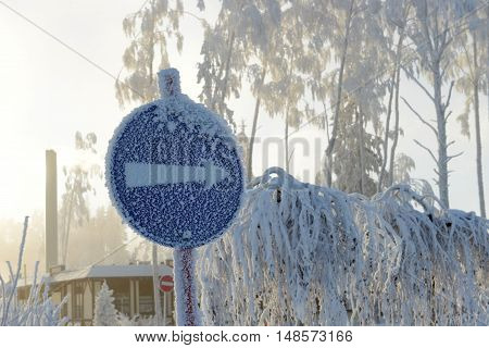 Road mark covered with frost on the background of frozen trees.