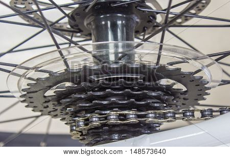 Closeup Bike Gears of a mountain bicycle