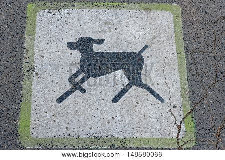 A dog walkway sign on a pavement