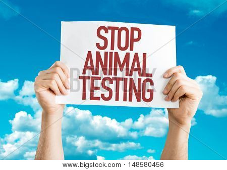 Stop Animal Testing placard with sky background