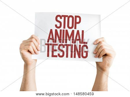 Stop Animal Testing placard isolated on white background