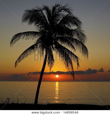 Sunset Over Caribbean Sea, Maria La Gorda, Pinar Del Rio Provinc