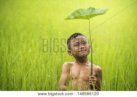 Little smiling boy farmer on green fields out door