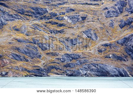 On September the landscape turn to yellow in Glacier Bay national park.