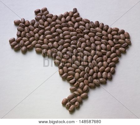 Map of Brazil with beans cartography land