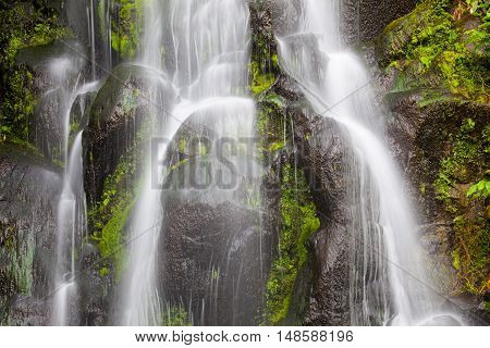 Waterfall at Azores (Achada / Sao Miguel Island)