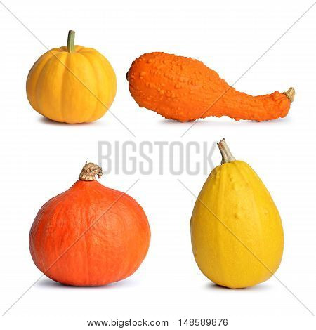 Yellow and orange pumpkins isolated on white background