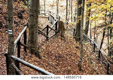 Hiking path with railing in the autumn deciduous forest. Seasonal natural scene. Beautiful place. Tourist sign. Tourism theme.