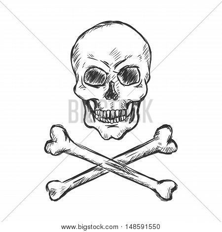 Vector Sketch Illustration - Pirate Skull And Crossbones