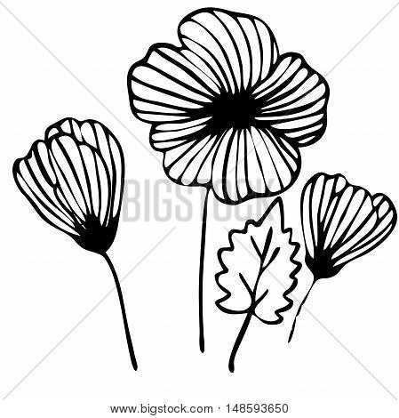 bouquet of flowers doodle drawn in outline for coloring or other needs