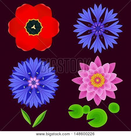 Set of different stylized lotus cornflower tulip and leaves. Collection of beautiful spring and summer flowers isolated on dark background. Elements of floral design icons. Vector illustration