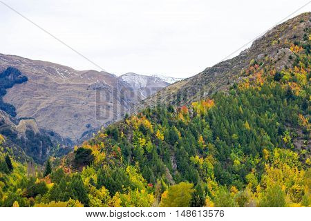 Arrowtown, New Zealand - South Island, Gold Mining Town