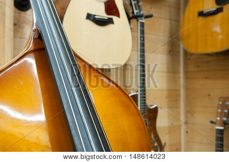 Double Bass Body And String Close Up