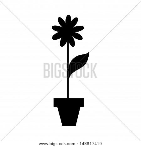 flower plant in a pot. natural blossom decoration. vector illustration
