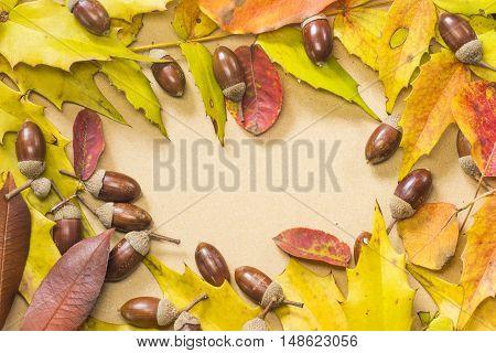 Acorn and autumn leaf frame on beige background