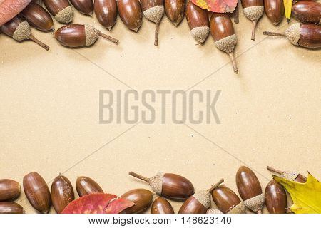 Acorn and autumn leaf border on beige background