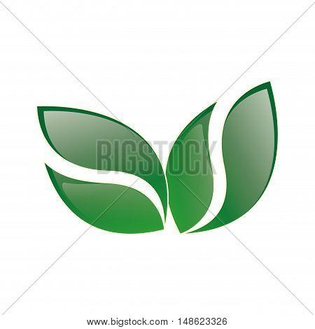 green leaves shape. corporation ecology emblem. vector illustration
