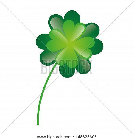 lucky green clover plant. irish symbol. vector illustration
