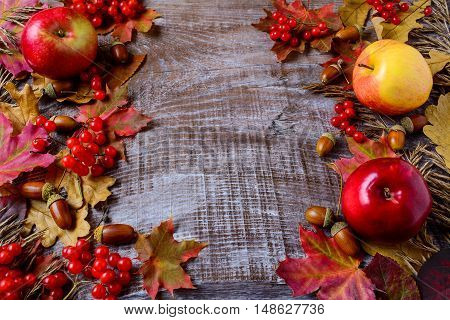 Abundant harvest concept with apples acorns berries and fall leaves. Thanksgiving background with seasonal berries and fruits.