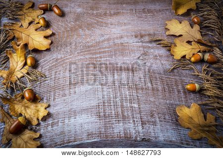 Frame of rye acorn and fall leaves on dark wooden background. Thanksgiving background with seasonal symbols.