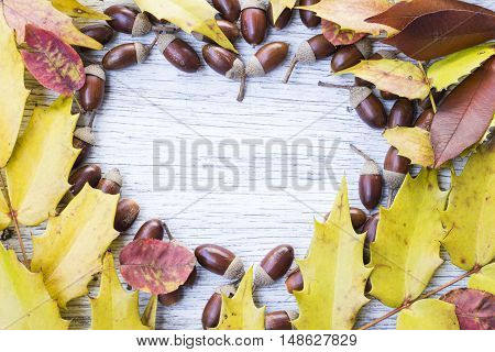 Heart shape frame of acorns and autumn leaves on painted wood board