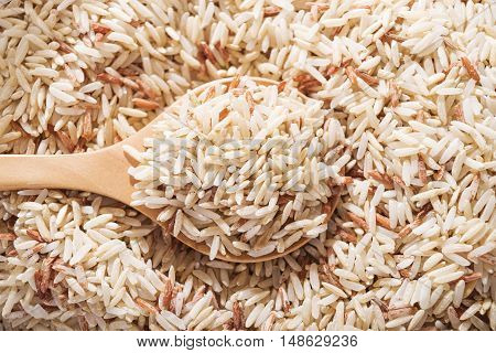 Rice Rice berry or rice berries in wooden spoon on brown rice background