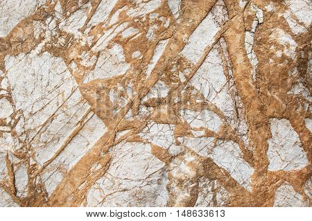 texture of surface old stone , background