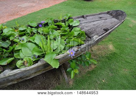 Landscaping Garden With Flowers On Wooden Boat