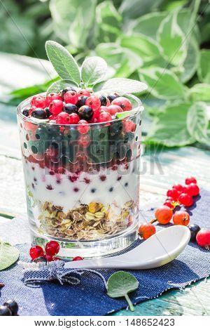 Healthy Diet Muesli Colorful Fresh Fruit