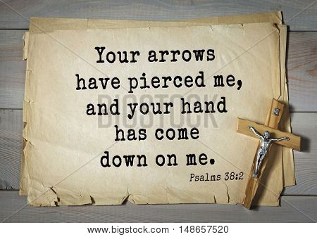 TOP-1000.  Bible verses from Psalms. Your arrows have pierced me, and your hand has come down on me.