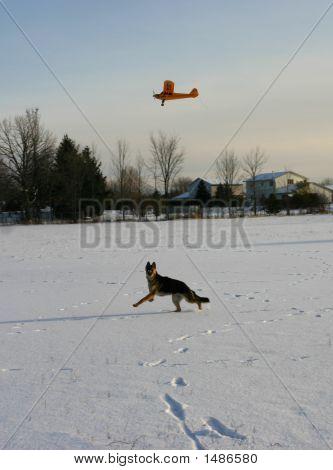 Plane Hunting