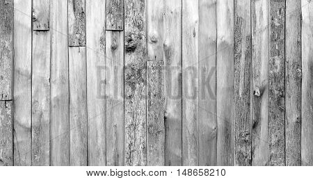 Wood Black And White Background Texture High Quality Closeup. May Be Used For Design As Background.