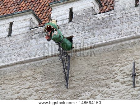 Dragon Shaped Rain Gutter of the Old Building in Tallinn Old Town, Estonia